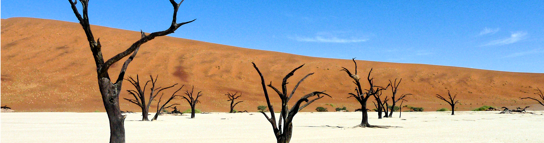 circuit dans le bush de la namibie en 4x4 avec un guide francophone